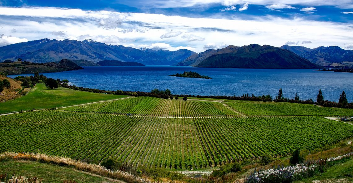 A Taste of the South Island
